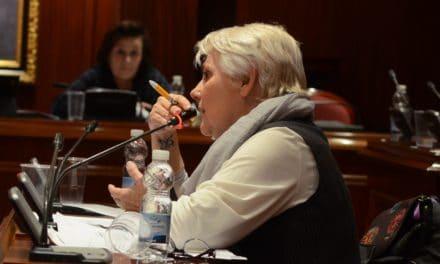 Maribel Martínez (IU) y el Pleno de diciembre