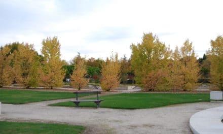 La Justicia deniega la re-admisión de los trabajadores de Parques y Jardines