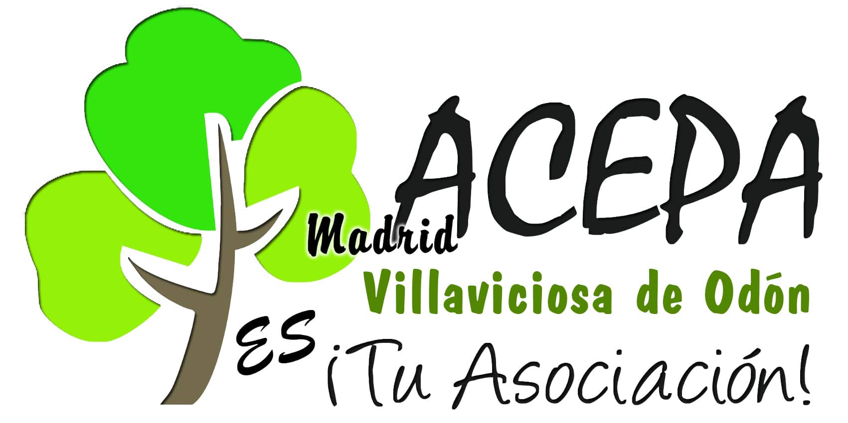 acepa pide el consenso político