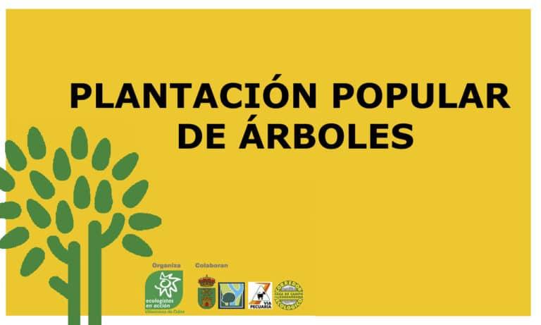 La «Plantación Popular de Árboles», será el próximo fin de semana