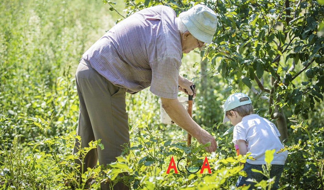 Día del Medio Ambiente Villaviciosa abuelos y nietos