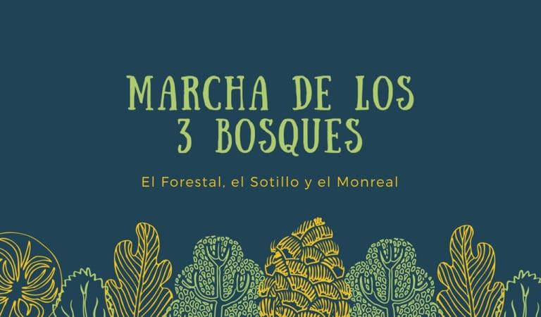 Se reinicia la marcha por los tres bosques de Villaviciosa